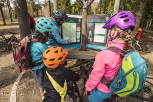 Fantastic Places for Family Mountain Biking in Scotland